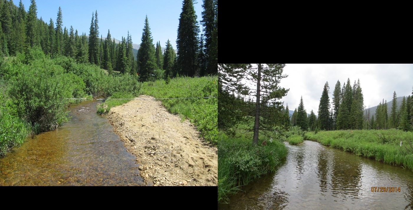 Before.After Sediment